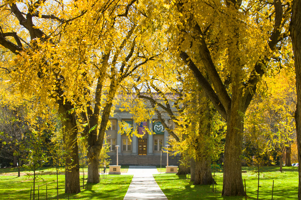 CSU's Administration Building in Autumn